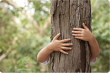 child hugging tree